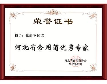 2016河北省食用菌优秀专家-亿昌菌业