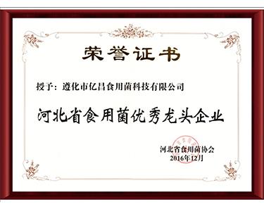 2016河北省食用菌优秀龙头企业-亿昌菌业