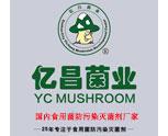 种植食用菌不懂技术没关系,看看亿昌菌业是怎么教您的(一)